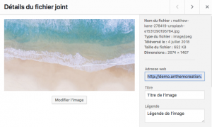 Administration de WordPress - Bibliotheque de medias wordpress recadrer une image etape 3