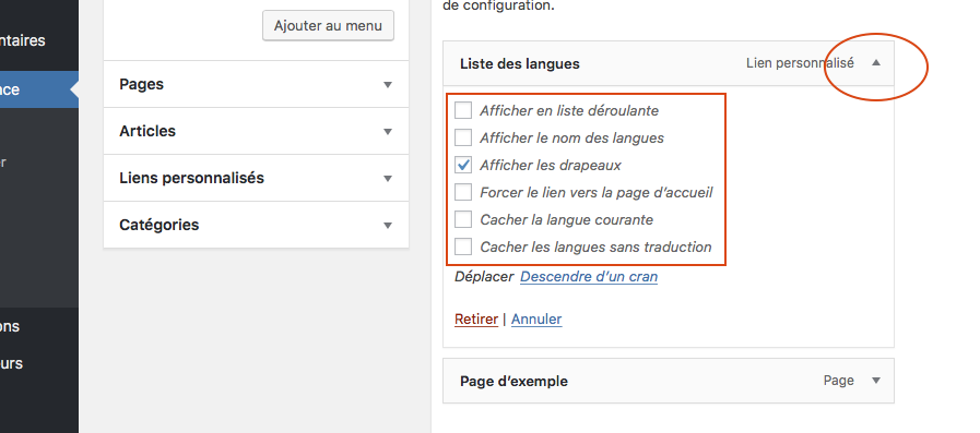 Traduire votre site avec le plugin wordpress polylang options du language switcher