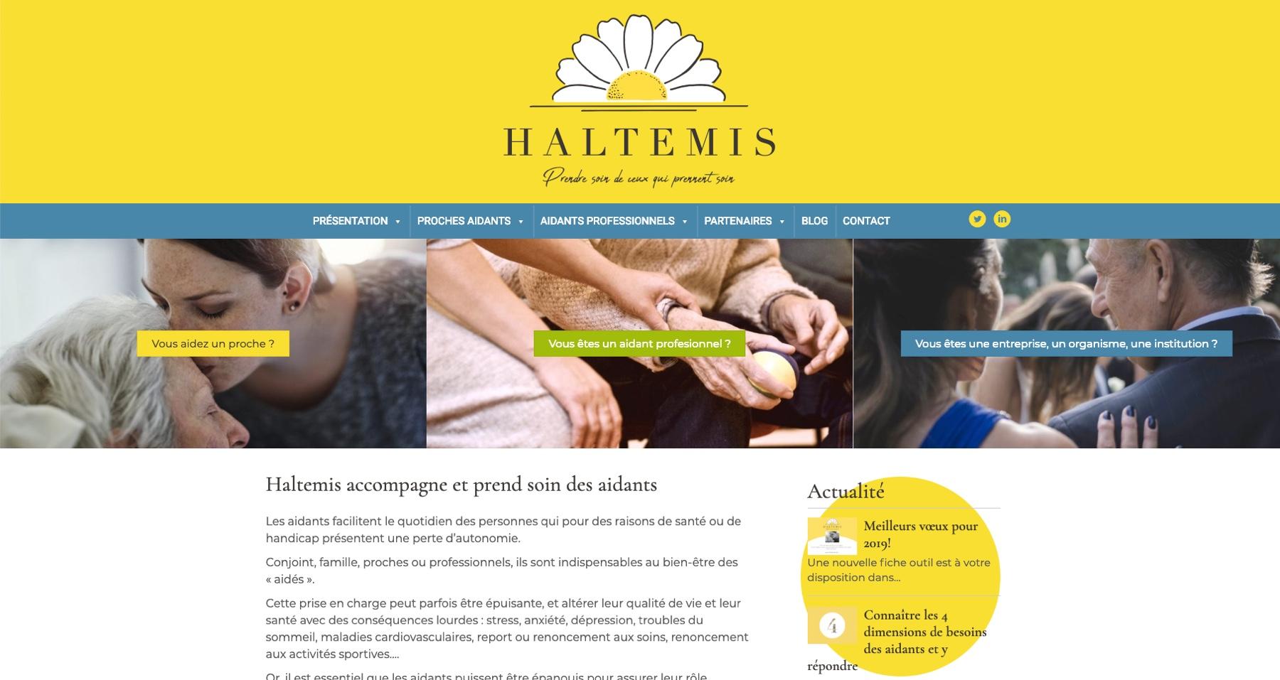 Anthem création création de site internet à reims haltemis site internet