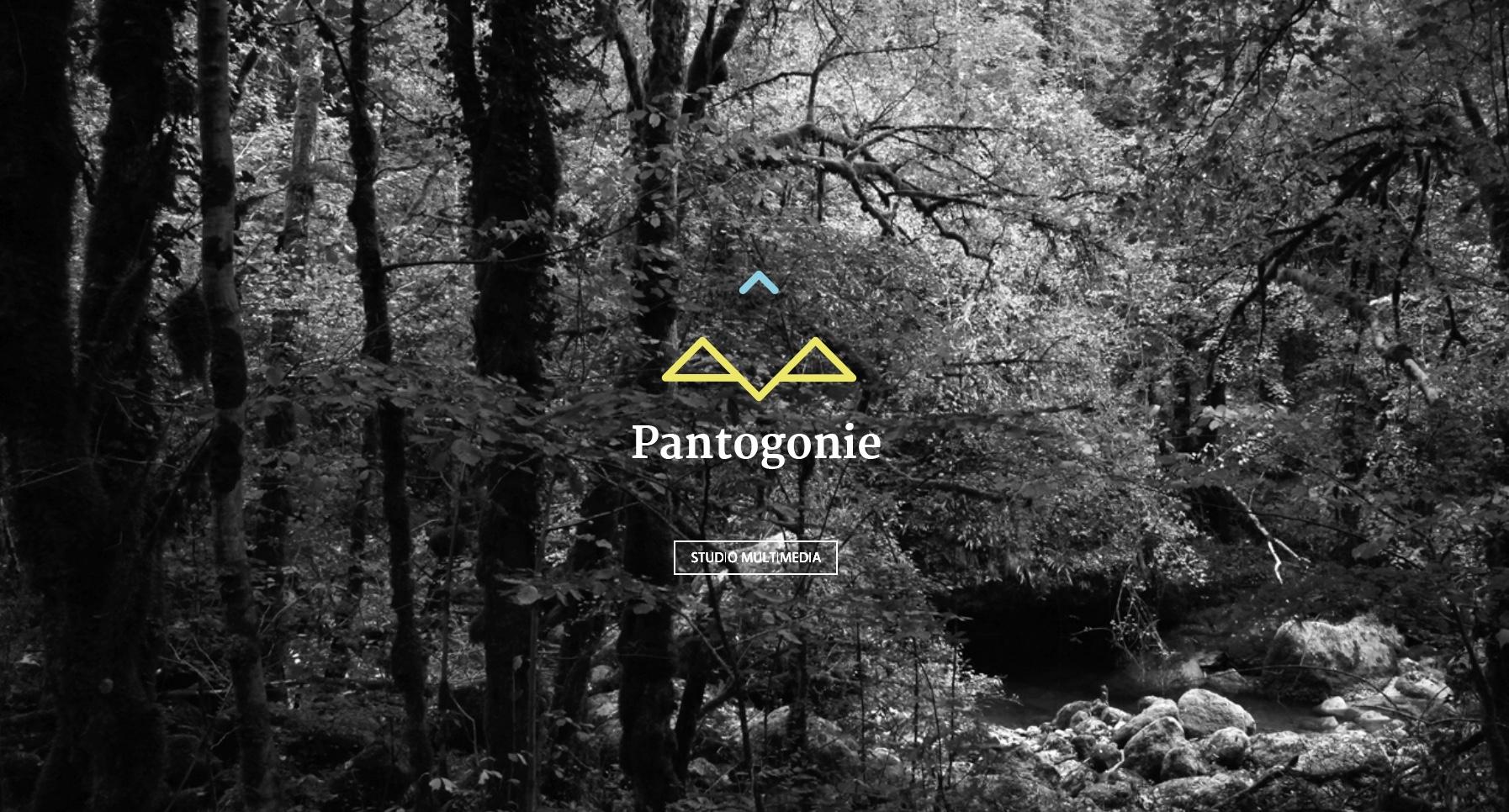 Anthem création création de site internet à reims pantogonie site internet