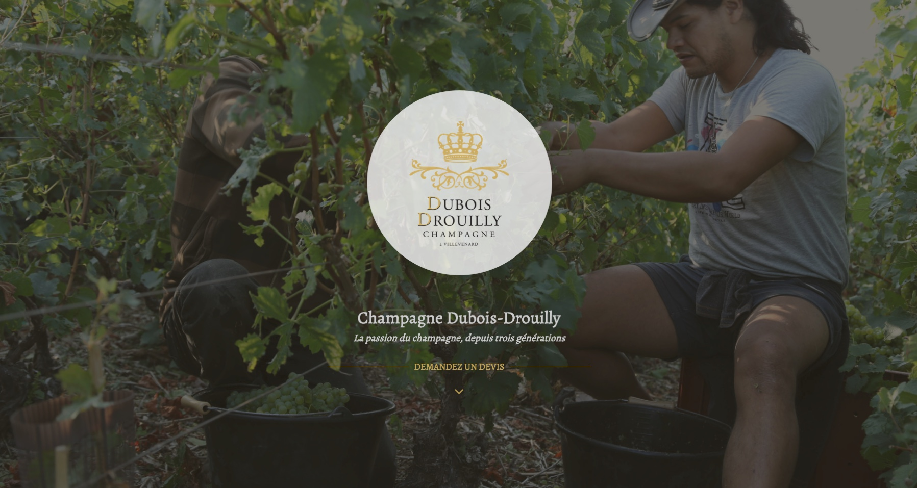 Anthem Création - Création de site Internet à Reims - Dubois Drouilly